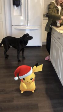 Toby Wardegas dog, Jetta being very observant of this wild Pikachu they found in his house!